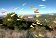 paper-planes-1277